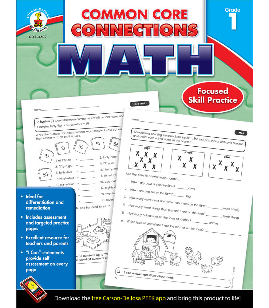 Common Core Connections Math Workbook Product Image