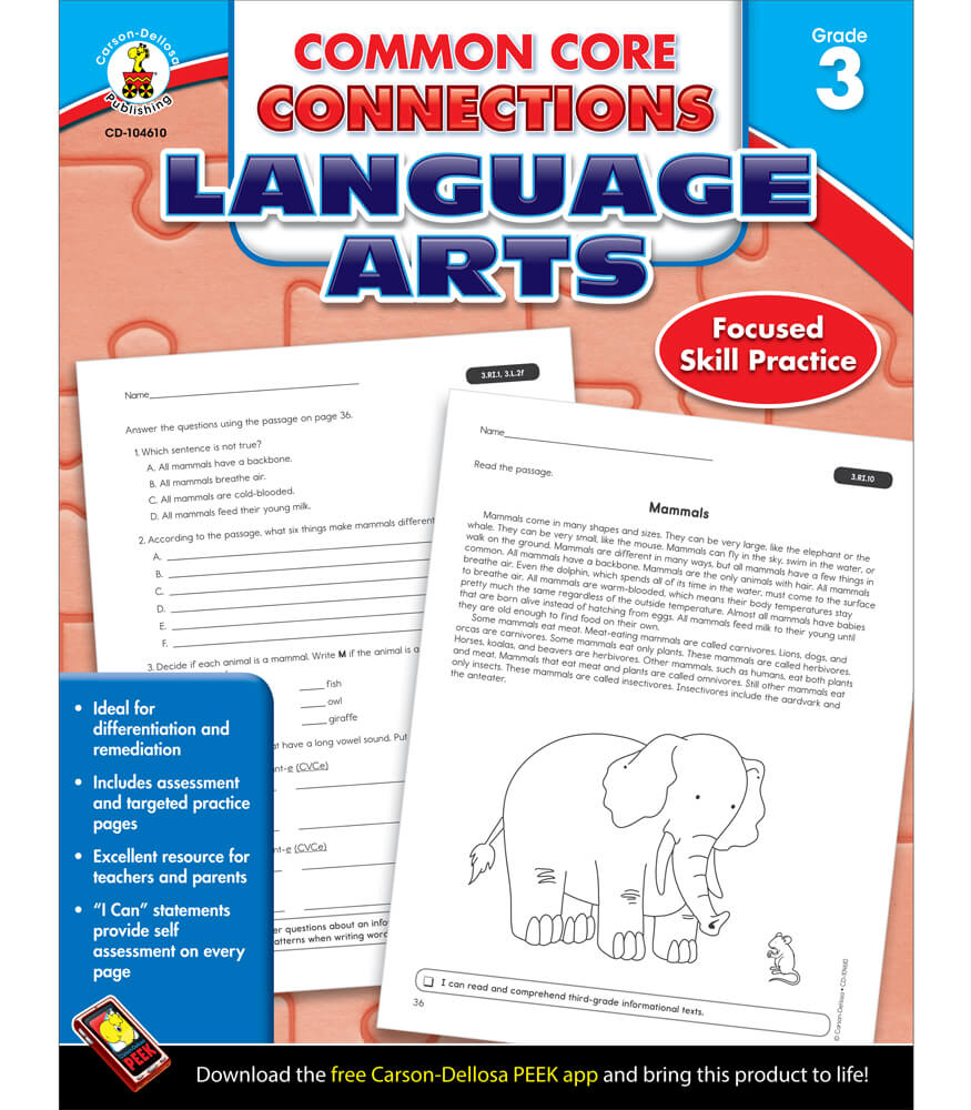 Common Core Connections Language Arts Workbook Product Image