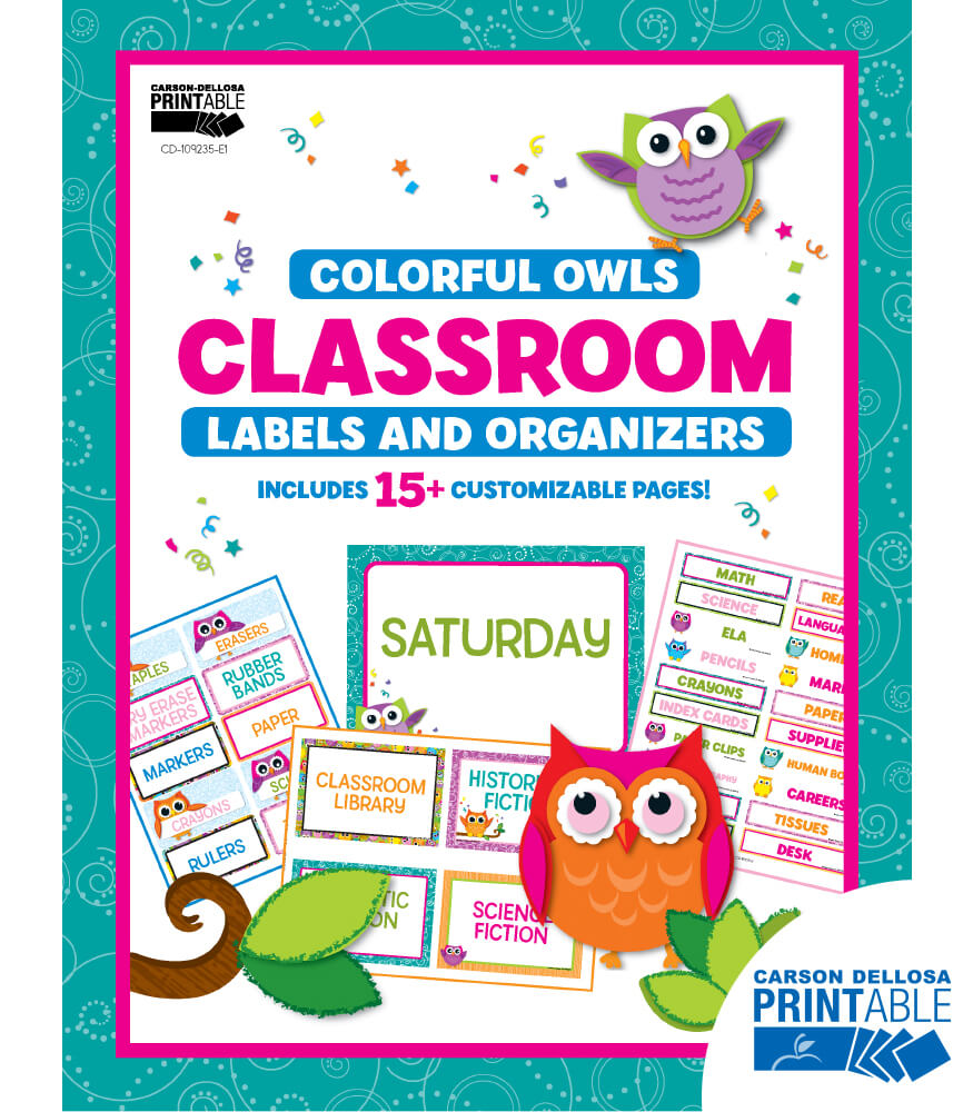Colorful Owls Classroom Printable Labels & Organizers Product Image