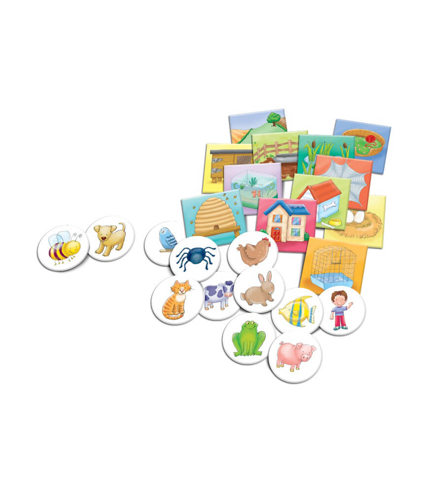 Where Do I Live? Board Game Product Image