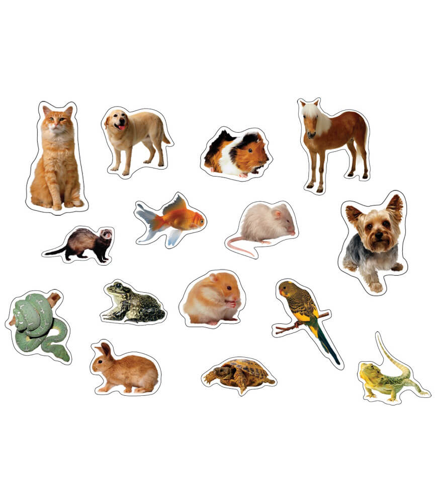 Pets: Photographic Shape Stickers Product Image