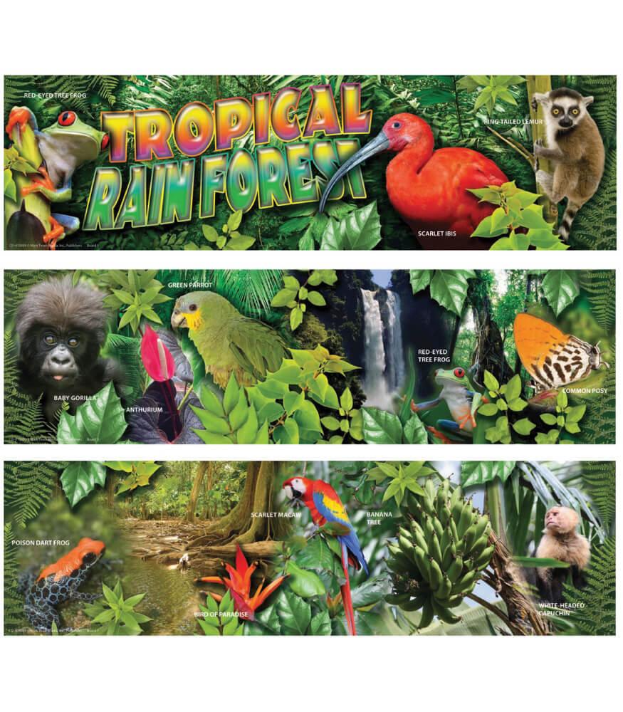 Tropical Rain Forest Mini Bulletin Board Set Product Image