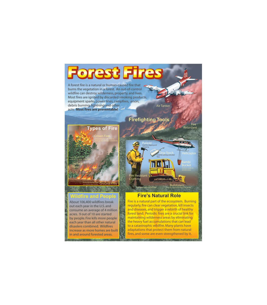 Forest Fires Chart Product Image