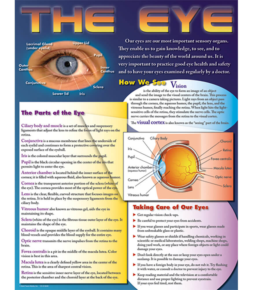 The Eye Chart Product Image