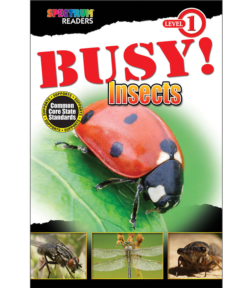 BUSY! Insects Reader Product Image