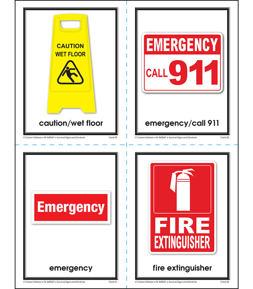 Survival Signs and Symbols Learning Cards Product Image