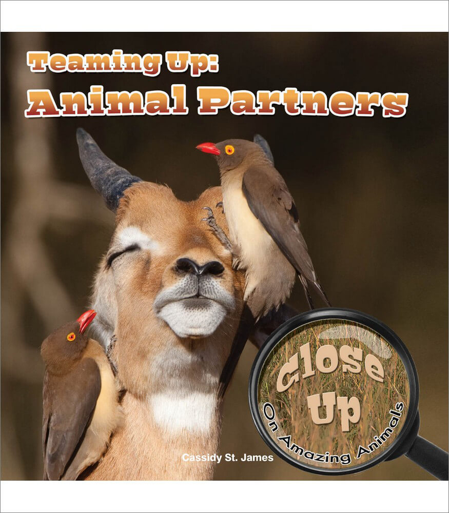 Teaming Up: Animal Partners Reader Product Image