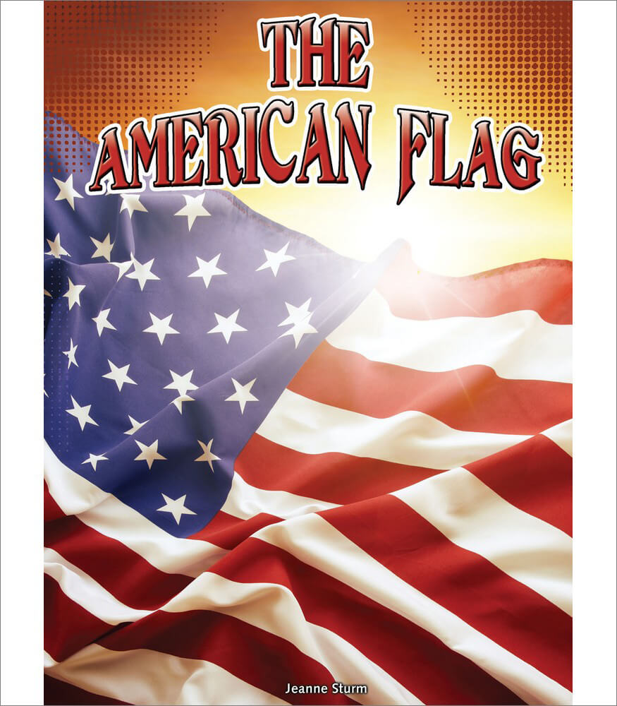 The American Flag Reader Product Image