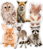 Animals Cut-Outs Product Image