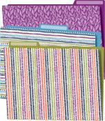 You-Nique File Folders Product Image